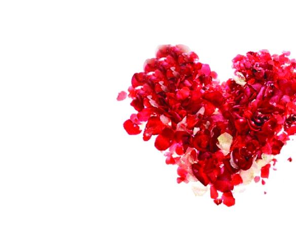 Valentines day gus 2019.jpg