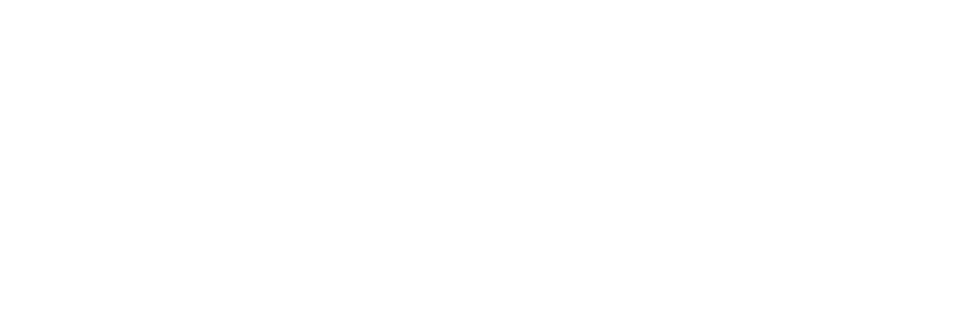 logo_AHB_2017_hvidi.png